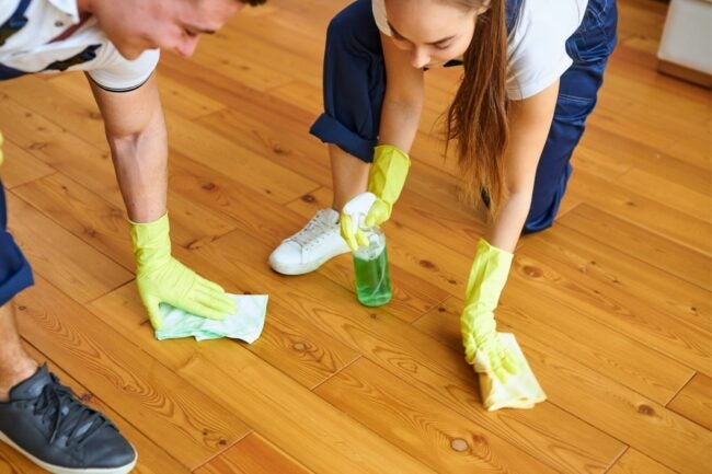 The Best Essential Oils For Cleaning Option