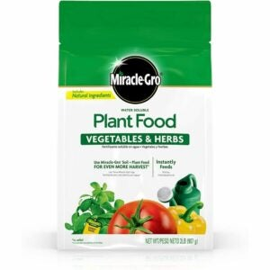 The Best Fertilizer For Peppers Options: Miracle-Gro Water Soluble Plant Food Vegetables