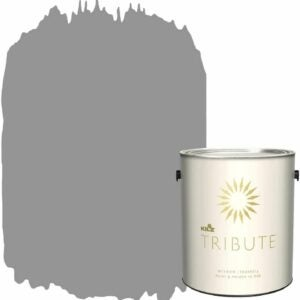 The Best One Coat Paint Options: KILZ TRIBUTE Interior Eggshell Paint and Primer