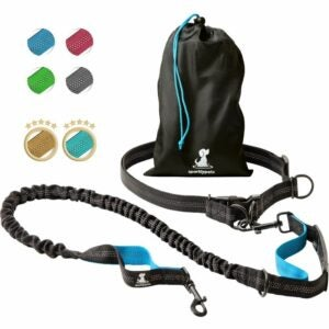 最好的可伸缩狗皮带选项:闪闪发光的宠物免提狗皮带专业安全带