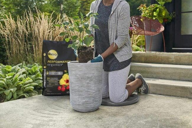 The Best Soil For Growing Vegetables Option