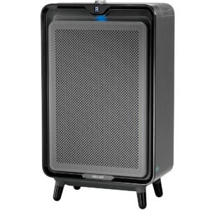 Best Air Purifier For Wildfire Smoke Options: Bissell Smart Purifier with HEPA and Carbon Filters