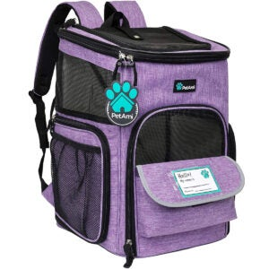 The Best Cat Carrier Options: PetAmi Pet Carrier Backpack for Small Cats