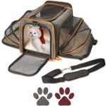 The Best Cat Carrier Options: Petpeppy.com The Original Airline Approved Expandable Pet Carrier