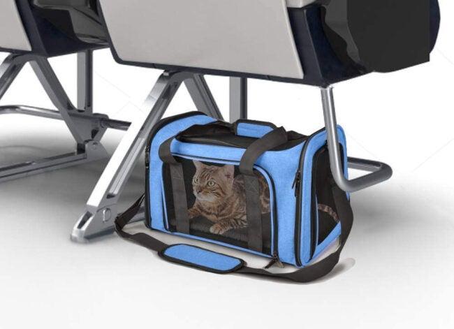 Best Cat Carrier Options