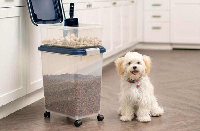 Best Dog Food Storage Options