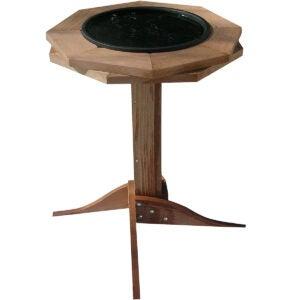 The Best Heated Bird Bath Options: Songbird Essentials Heated Birdbath
