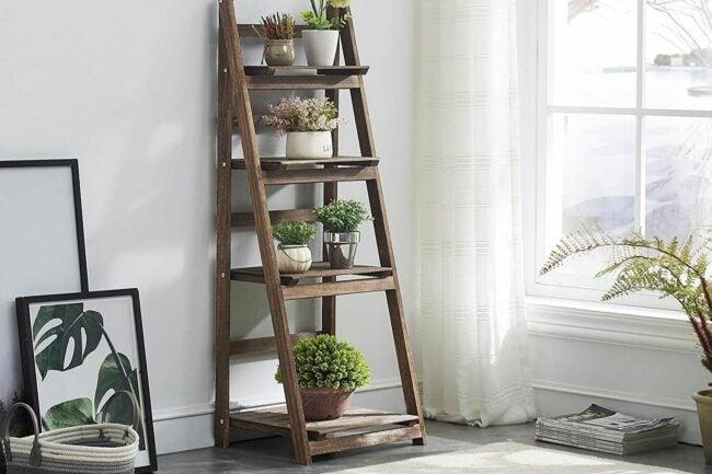 The Best Indoor Plant Stands Option