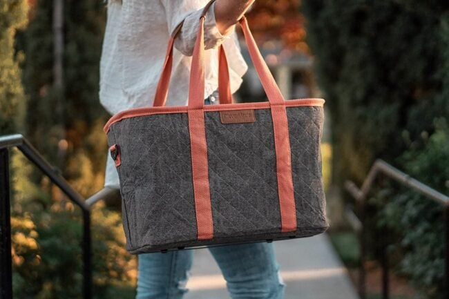 The Best Insulated Grocery Bag Option