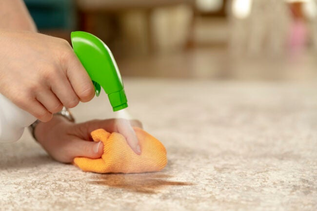 Removing Stains From the Carpet