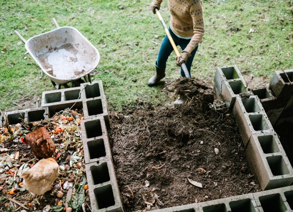 woman-scooping-nutrient-rich-compost-into-wheelbarrow-picture-id1200151530