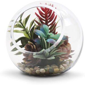 最好的绞成型:WGV倾斜碗玻璃花瓶