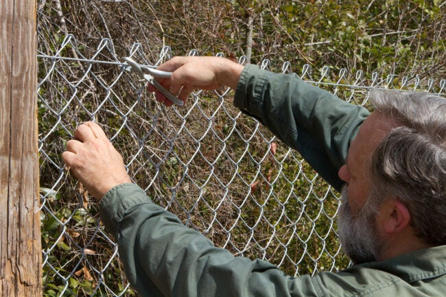 Chain Link Fence Cost: DIY vs. Hiring a Professional