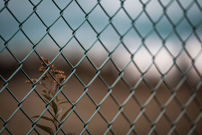 How to Save Money on Chain Link Fence Costs