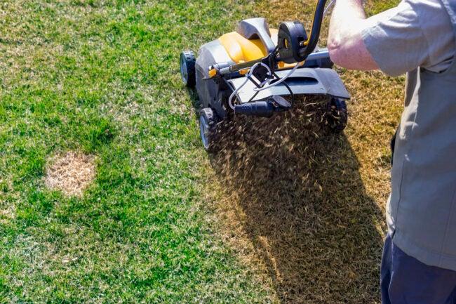 草坪曝气拯救死草