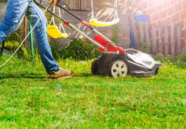 Mowing Lawn to Save Dead Grass
