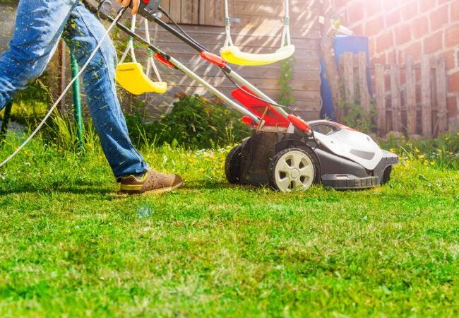 割草坪拯救死草