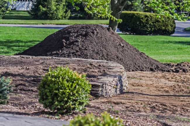 Questions to Ask Your Local Topsoil Delivery Service
