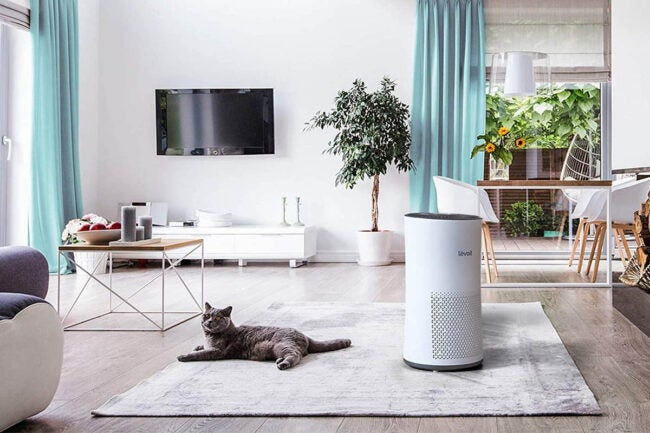 The Best Air Purifiers Options