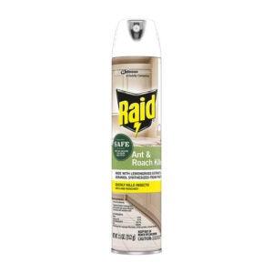 最好的木匠蚂蚁杀手选择:Raid杀手喷雾