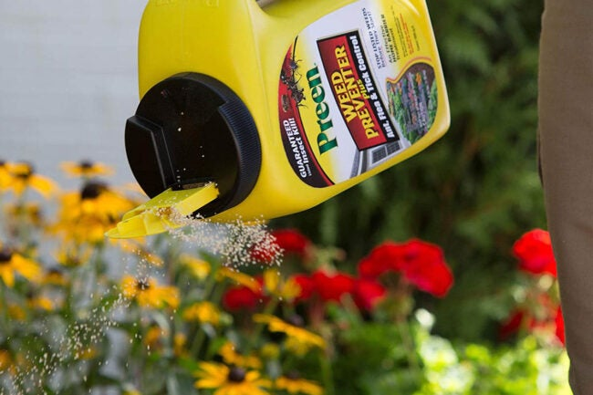 The Best Pre-Emergent Herbicide Options