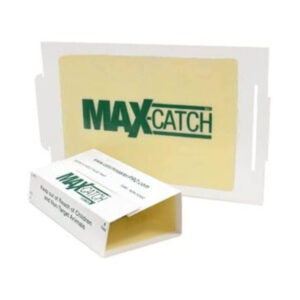 The Best Scorpion Killer Option: Catchmaster 72MAX Pest Trap