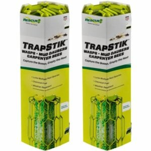 The Best Carpenter Bee Trap Option: RESCUE! TrapStik for Wasps, Carpenter Bees
