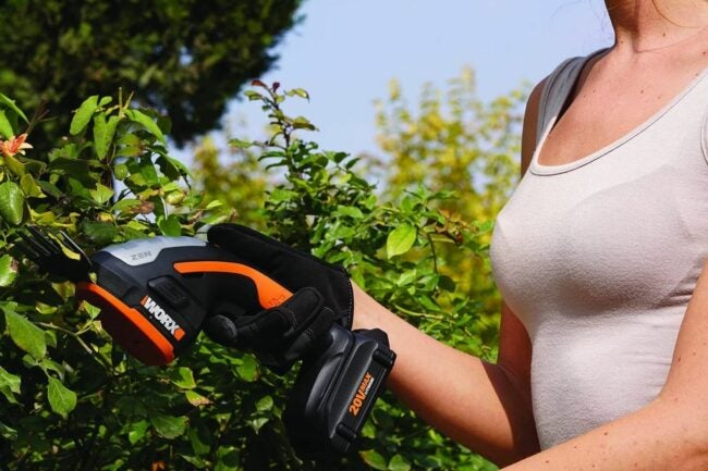 The Best Cordless Grass Shears Option