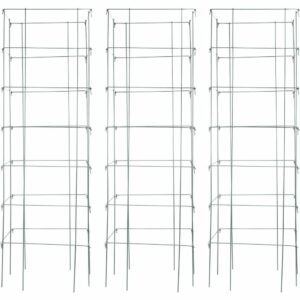 The Best Tomato Cages Option: Burpee Extra Large Heavy Gauge Tomato 3 Cages