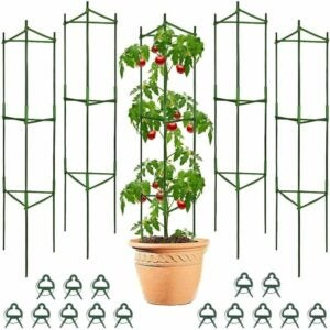 The Best Tomato Cages Option: Derlights 5-Pack Tomato Cages