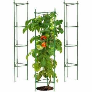 The Best Tomato Cages Option: K-Brands Tomato Cage - Plant Stakes and Support