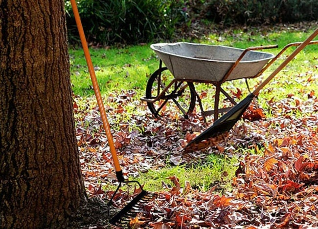 The Best Bow Rakes for Your Lawn and Garden