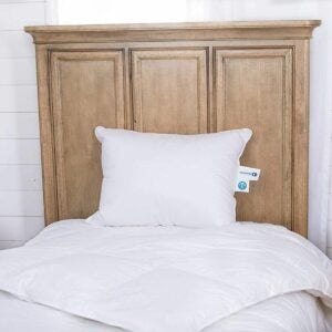 The Best Feather Pillows Option: Continental Bedding 100% Goose Down Pillows