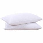 The Best Feather Pillows Option: puredown Natural Goose Down Feather White