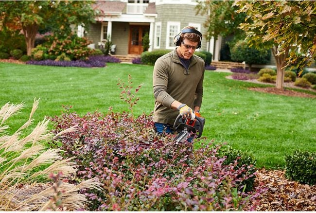 Best Gas Hedge Trimmer Options