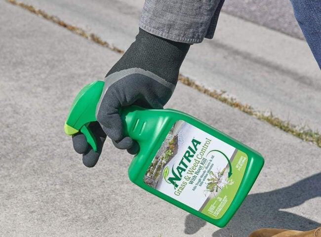 Best Organic Weed Killer Options