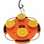 The Best Oriole Feeder Option: Songbird Essentials Ultimate Oriole Feeder
