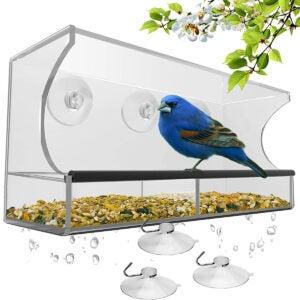 Best Squirrel Proof Bird Feeder Options: Window Bird Feeder with Strong Suction Cups