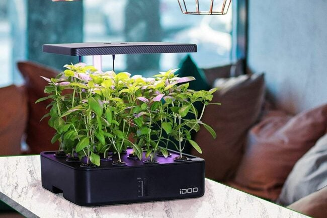 The Best Hydroponic System Option