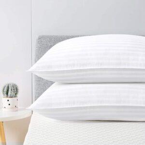 The Best Hypoallergenic Pillows Option: viewstar Queen Gel Pillows 2 Pack for Sleeping