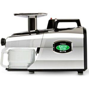 Best Masticating Juicer Option: Tribest GSE-5050 Cold Press Masticating Slow Juicer