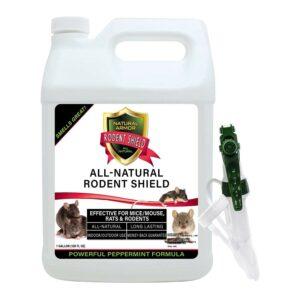 Best Rat Repellent Natural