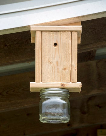 How to Make a Carpenter Bee Trap Tips