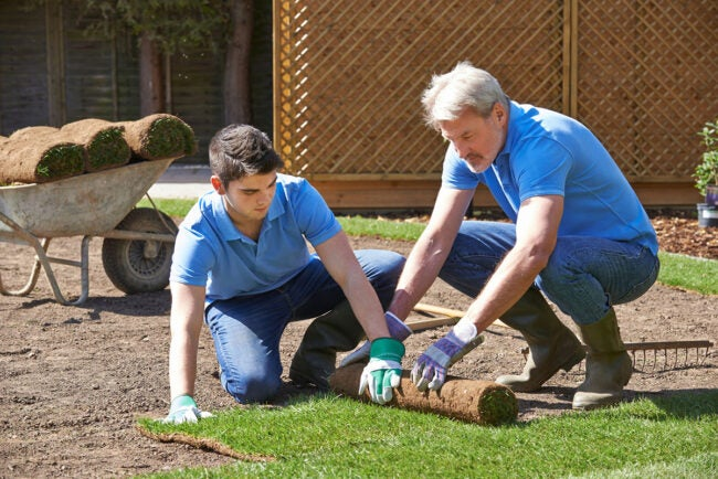 Sod Prices DIY vs. Hiring a Professional for Sod Installation