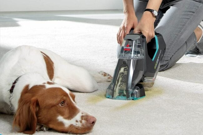 The Best Carpet Cleaner for Pets Option
