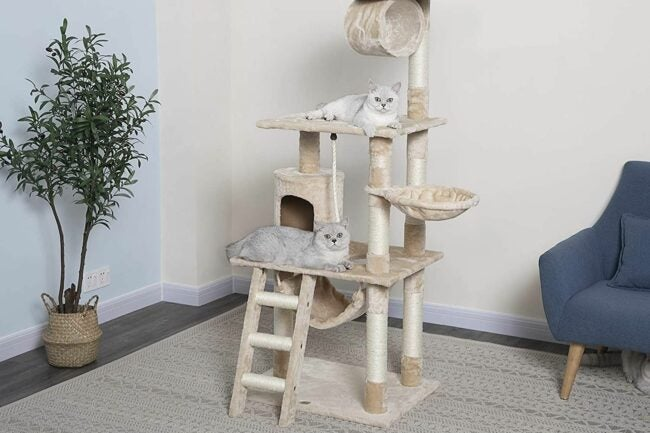 The Best Cat Tree Option