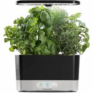 最佳水培系统选择:空中花园黑色收获室内水培花园