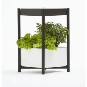 最佳水培系统选择:Miracle-Gro室内种植系统,LED侧桌