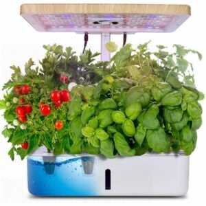 The Best Hydroponic System Option: Moistenland Hydroponics Growing System Starter Kit