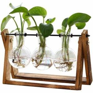 最佳水培系统选择:XXXFLOWER Bulb Glass水培家庭花园